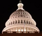 A U.S. Congressional panel penned a report stating small businesses should have increased opportunity to win contracts.