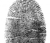 The FBI awarded US Investigations Services with a multiple-year contract to resume channeling fingerprints to the federal agency.